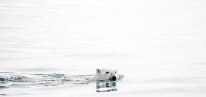 global-uppvarmning-ett-hett-amne